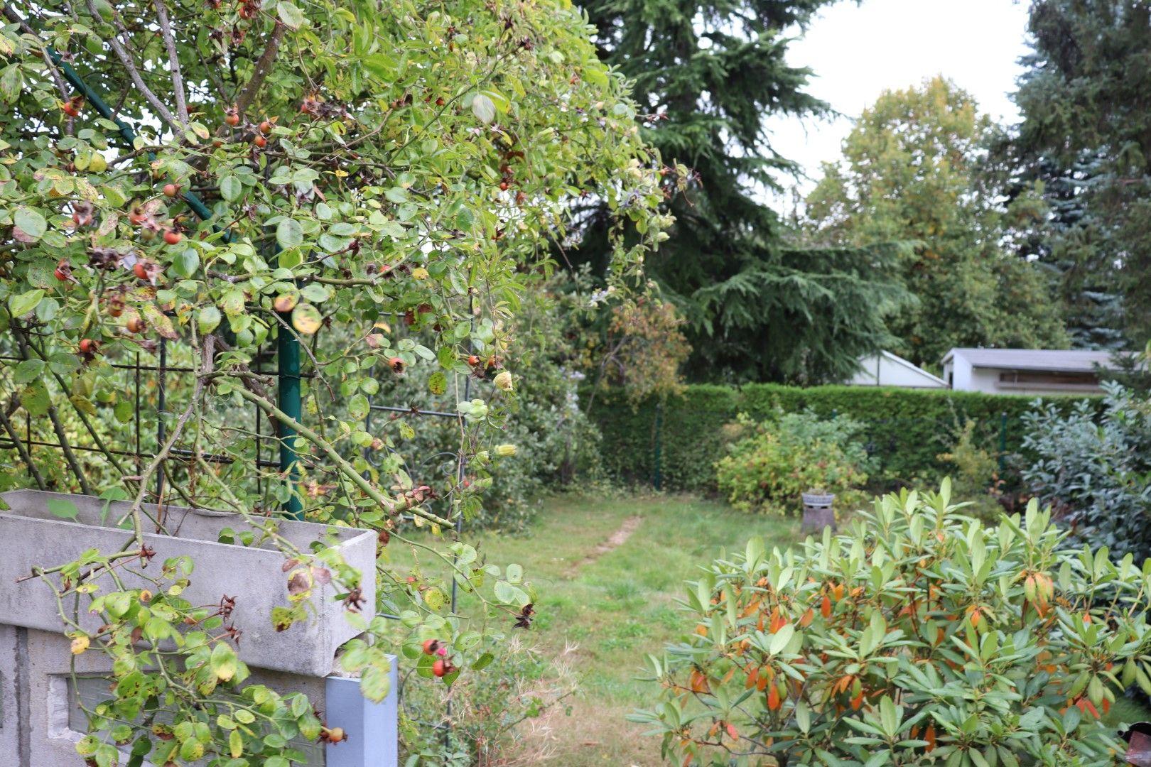 Immobilie Nr.0273 - Doppelhaushälfte in WEG mit Garten & Terrasse - Bild 7.jpg