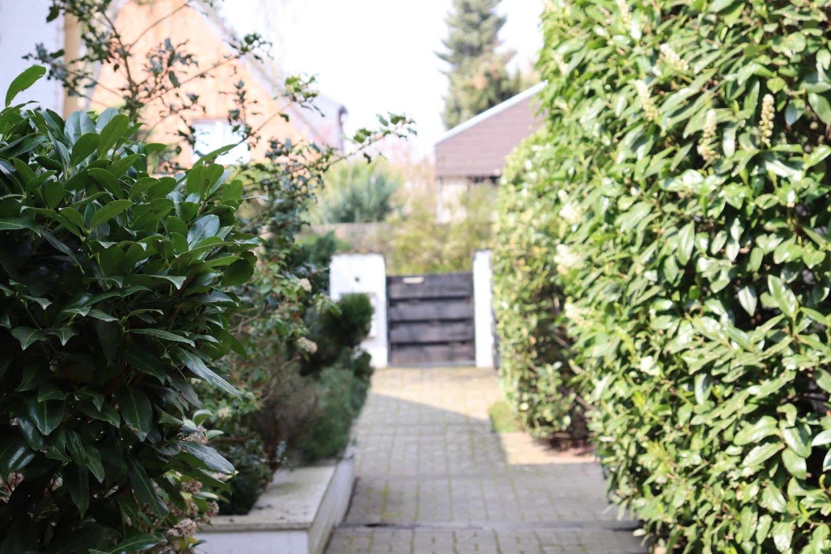 Immobilie Nr.0296 - Grundstück mit 2 DHH und 2 Garagen  - Bild 3.jpg